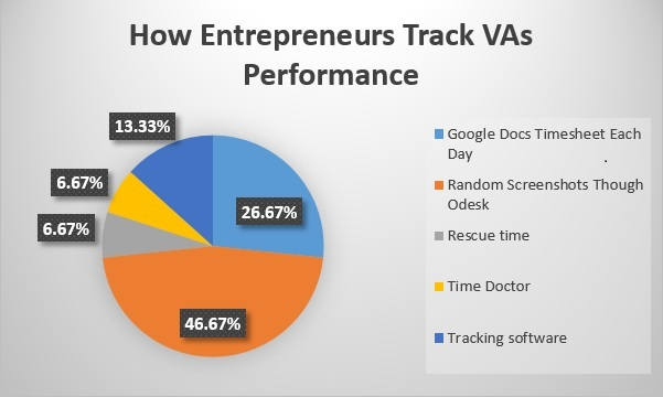 How Rntrepreneurs Track VAs Performance